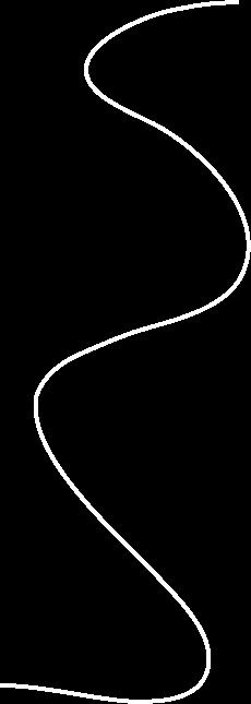 camille_line_graphic_white